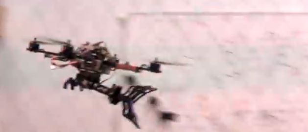 Avian-Inspired Grasping Drone